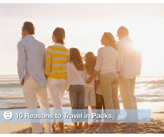 10 Reasons to Travel in Packs