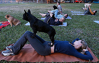 Doga Is Yoga With Your Dog