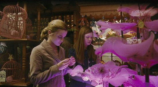 Surprising Decorating Finds From Harry Potter and the Half-Blood Prince