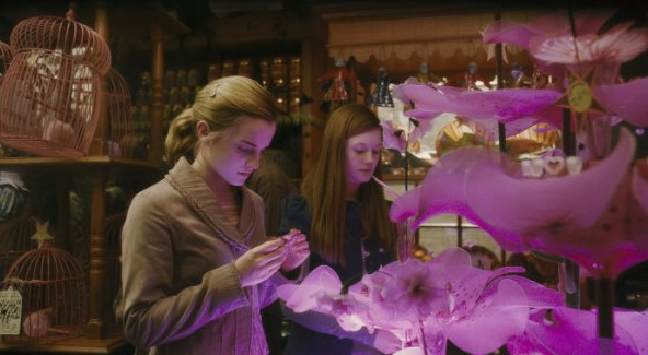 Hermione and Ginny check out some magically pretty items. I love how there's actually a little touch of pink in this movie!  Source