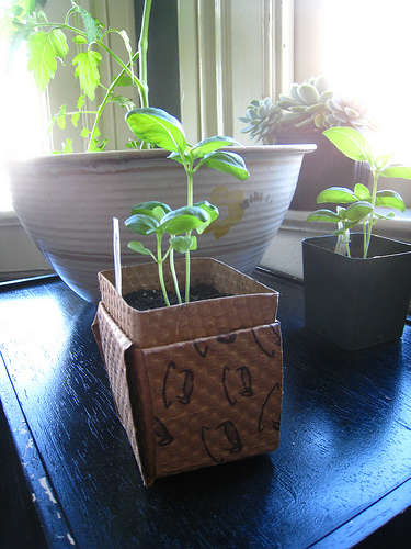 Turn those old coffee sleeves into something to grow on, with Instructables.