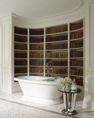 Love It or Hate It? Books and Bathtub
