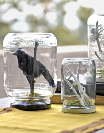 Country Living shows you how to create spooky terrariums out of jars.