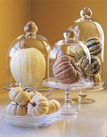 Seasonal vegetables, like these gourds and squashes, make an instant Fall display when they're placed under glass.  Source