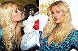Paris Hilton Chimpanzee, Paris Hilton Eyelashes, Paris Hilton Makeup