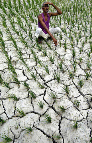 Indian Women Asked to Plow Fields Naked For Rain