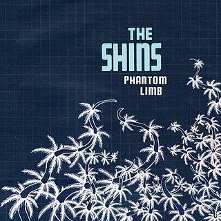 Hot Track: The New Shins Single