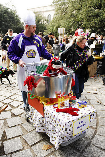 mardi_gras_barkus_parade-002
