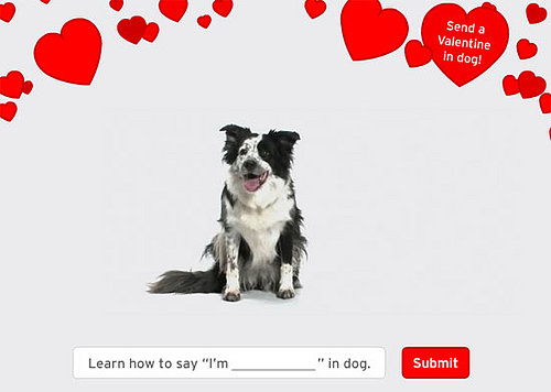 Send a Valentine in Dog!