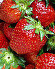 Lil Tip: Strawberries Are Natural Way to Get Folate
