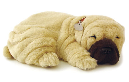 Perfect Petzzz: Shar Pei