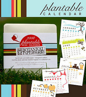 Cool Idea:  A Calendar You Can Plant