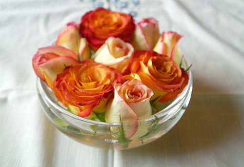Casa Quickie: Easy and Elegant Roses