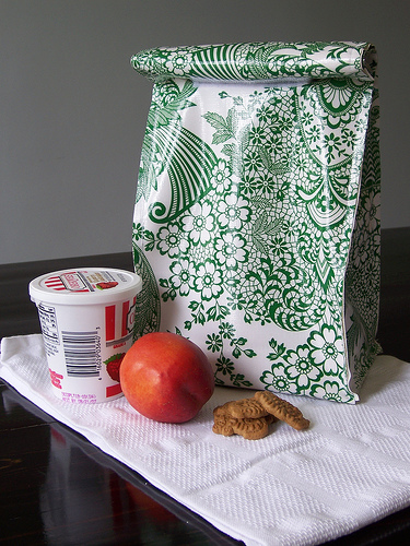 DIY:  Oil Cloth Lunchbox