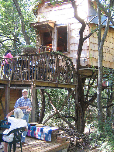 An outside view of the treehouse.
