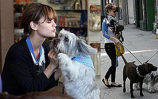 Rachel Bilson and Thurman Murman At the Doggie Day Care