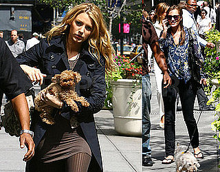 Photos of Leighton Meester, Penn Badgley, and Blake Lively On the Set of Gossip Girl
