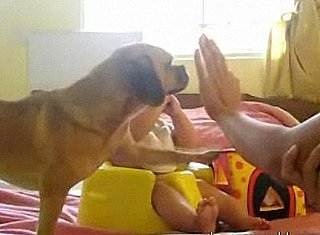 Puppy Steals Baby's Thunder