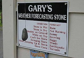 Who Needs the Weather Channel?