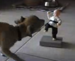 Chihuahua Versus Karate Toy