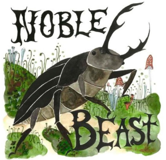 Andrew Bird: Noble Beast