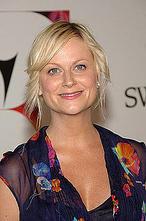 Amy Poehler Could Join New NBC Show from The Office Team