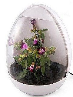 USB Greenhouse: Love It or Leave It?