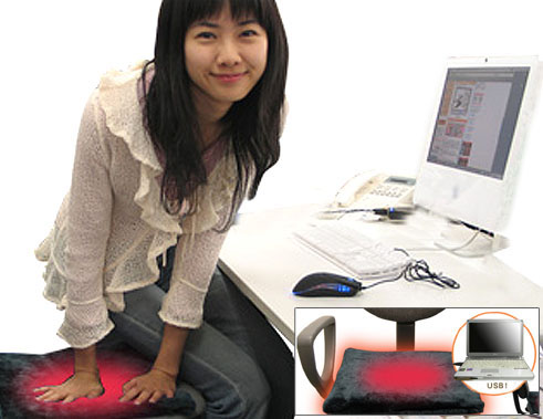 USB Heated Cushion
