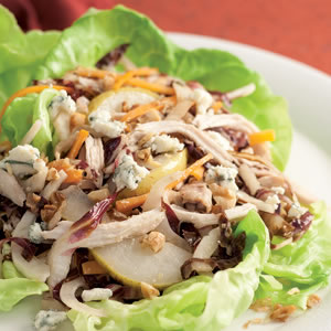 Warm Chicken, Radicchio, and Fennel Salad