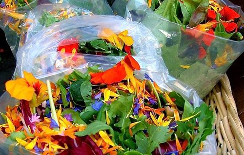 Would You Eat This Salad Mix With Flowers?