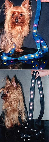 Dots Reflective Dog Leash ($18)