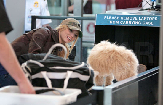 Jessica Simpson and Daisy at LAX