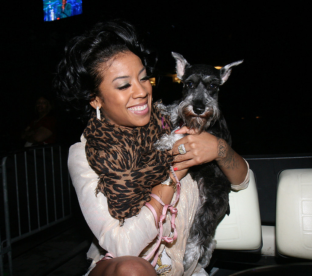 Keyshia Cole Cuddles With a Pup at the 2008 Essence Music Festival