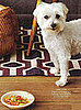 Pet-Friendly Recipe from October&#039;s Every Day With Rachael Ray Magazine