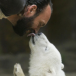 The Scoop: Knut's Caretaker Dies