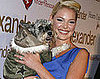 In the Spotlight: No More Pups or Heigl's in the Doghouse!