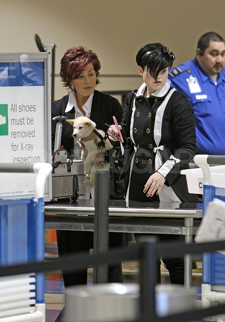 Kelly Osbourne at the Airport With Shiba Pup