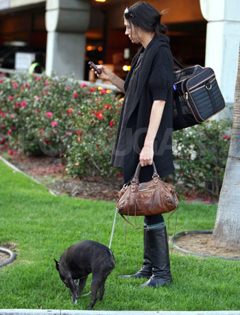 Famke Janssen and her Boston Terrier, Licorice, at LAX