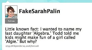 Lighten Up! Fake Sarah Palin on Twitter, Giggles Ensue?