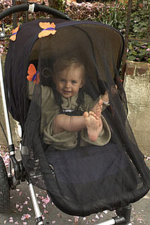 Mosquito Nets for Strollers
