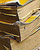 Geek Tip: Get Rid of the Yellow Pages With Yellow Goes Green