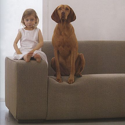 Midday Muse:  Kids and Dogs