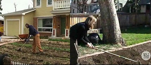 In the News: Farms Sprout in Suburbia
