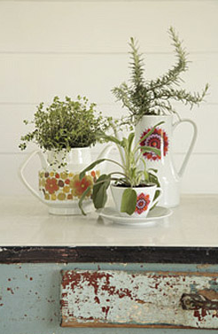 Vintage pots provide a cheerful, '60s pop sensibility for these varied plants.