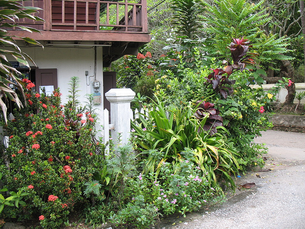 Home Away From Home: A Garden Tour in Laos
