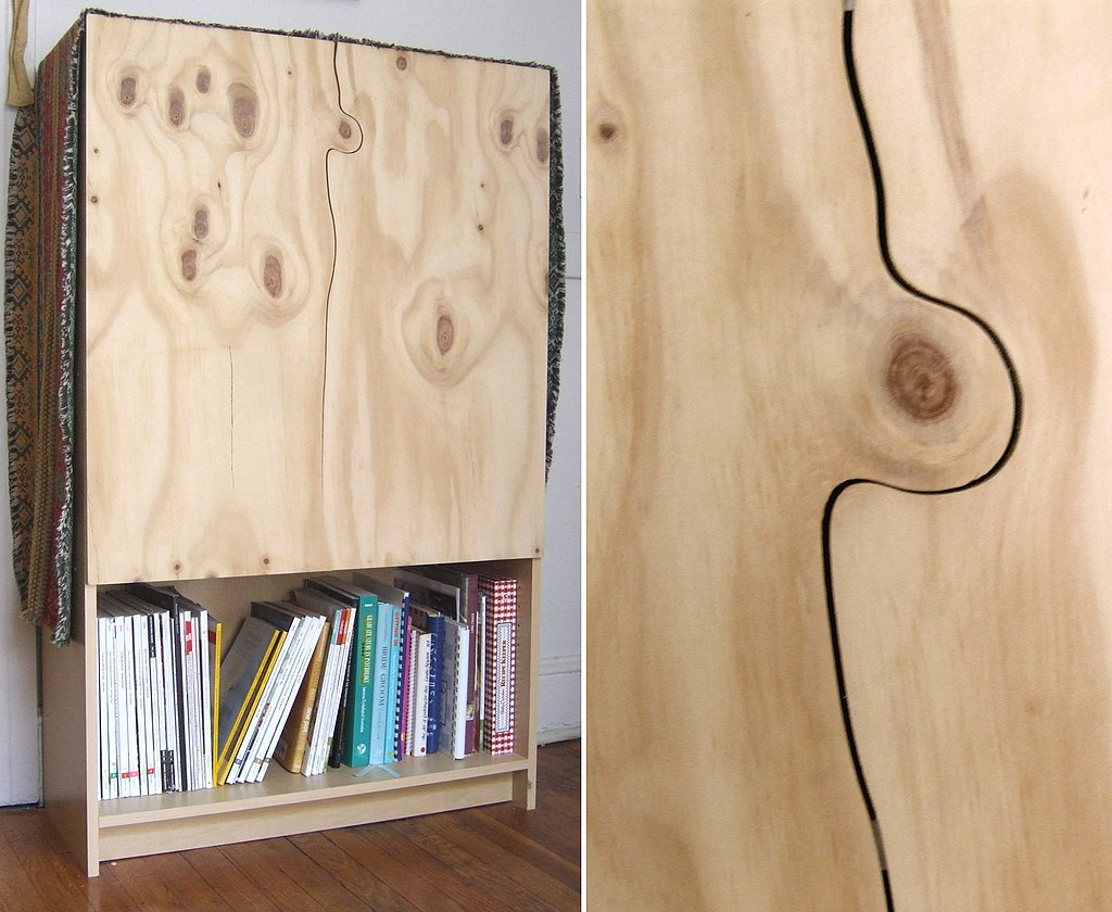 Tyler reinvented an Ikea bookcase by adding plywood doors. He cut around a knot in the plywood, which gives this low-budget material a unique, luxe look.