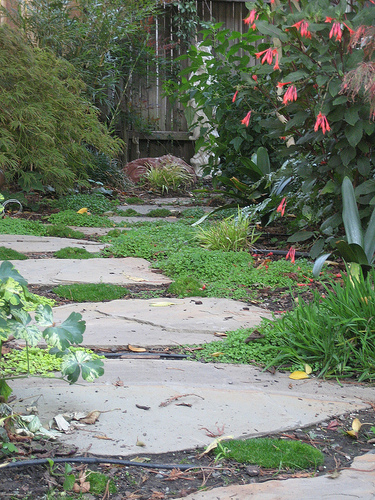Flagstone, which is interspersed with moss, winds a path to a beautiful garden statue.