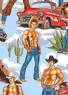 Product of the Day: Hunky Cowboy Fabric