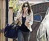 Photo Slide of Jessica Biel Leaving a Friend's House in LA Wearing a Khaki Jacket