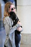 Ellen Pompeo Cuddles Her Poodle